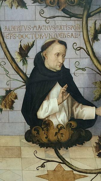 Albertus Magnus Dominican monk