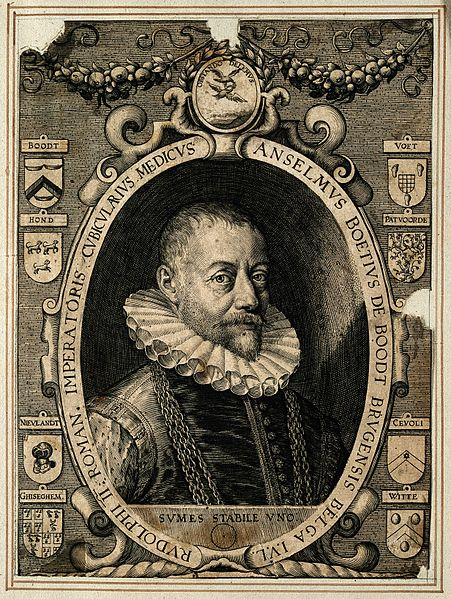 Anselmus de Boodt physician